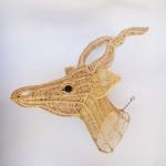Springbok Head -2