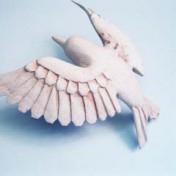 WOODEN BIRD – A