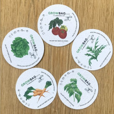 Growing Paper Seeds – Set of 5